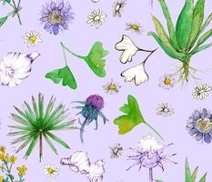 Medicinal Herbal Lavender