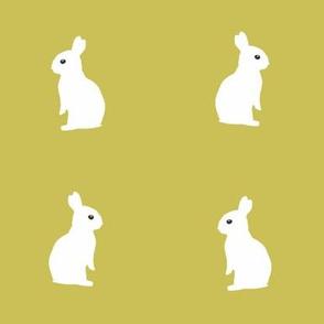 sitting rabbits - mustard