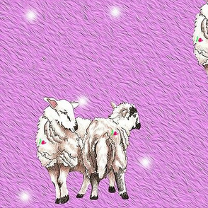 lambsblanket