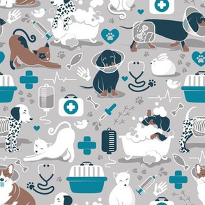 Small scale // VET medicine happy and healthy friends // grey background turquoise details navy blue white and brown cats dogs and other animals