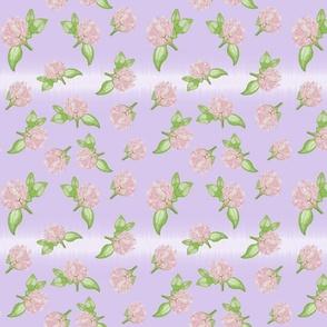 Delicate Clovers Purple BG