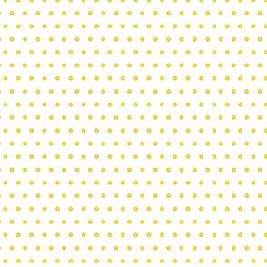 5 petal flower yellow