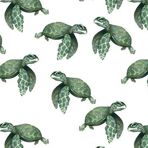 Quiet Sea Turtles - Smaller Scale