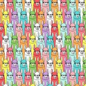 (micro scale) rainbow llamas C18BS
