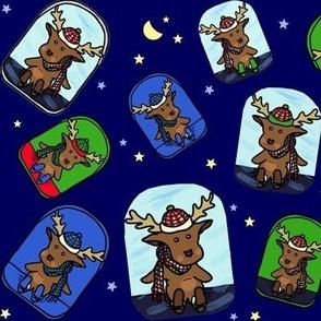Wild Spirit Moose Adventures
