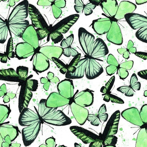 7792952-green-watercolor-butterly-by-studiodena