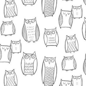 """""""Little"""" Night Owl White/Gray"""