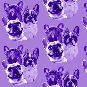 purple frenchy fabric