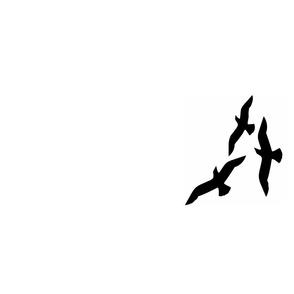 seagulls Tea Towel