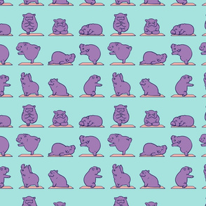 Baby Hippo Yoga