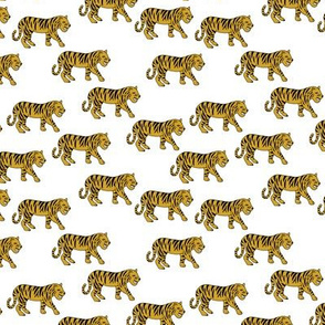Cool little tiger illustration jungle theme ochre yellow on white