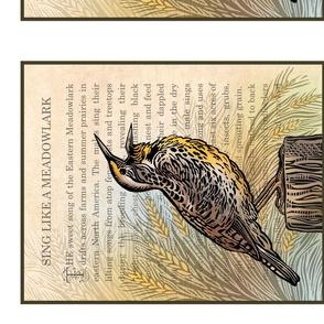 Meadowlark panel