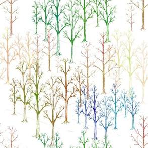 Winter Wonderland  Trees Woodland colors
