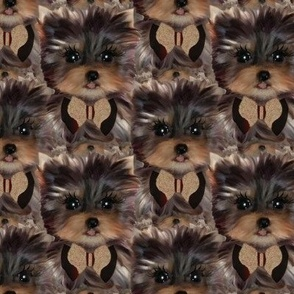 Yorkie Puppy Background - Large