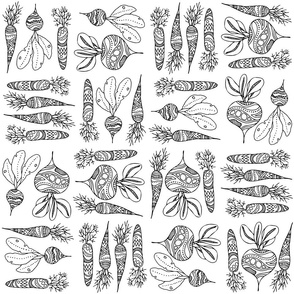 Root vegetables, black and white