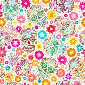 Colorful Sugar Skulls on White