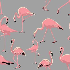 Flamingos grey large scale