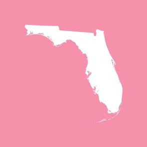"Florida silhouette - 18"" white on pink"