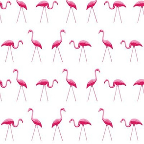tiny pink plastic flamingos in a row on white