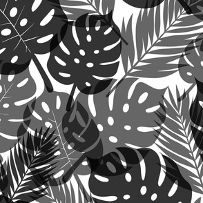 Tropical Shadows - Black on White - Large Scale