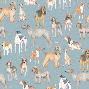 Hound dogs on blue