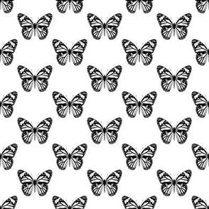 Monarch Butterfly Pattern | Black and White