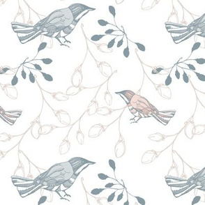 Grey blue and pink forest birds