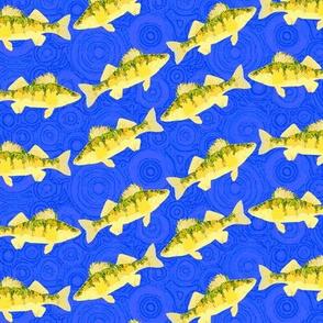 perch wave
