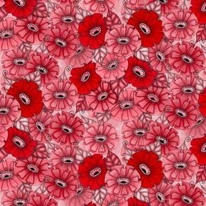 Red monochrome zinnias