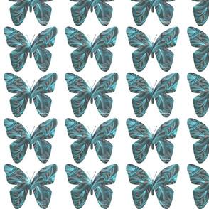 Ocean Fans Butterfly