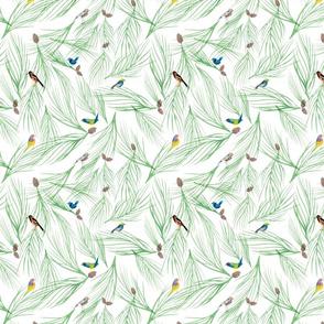 Wild Birds and Pine