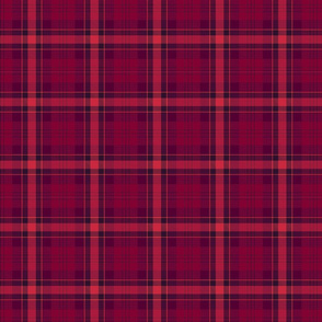 Red and purple plaid.