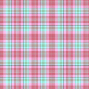 Mint and pink plaid