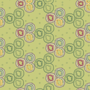 colorful_kiwi_layers