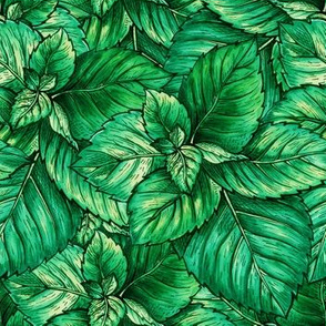Green Mint Foliage Seamless Pattern. Tea Herb Theme Object Repeating. Peppermint or Spearmint Botany Plant