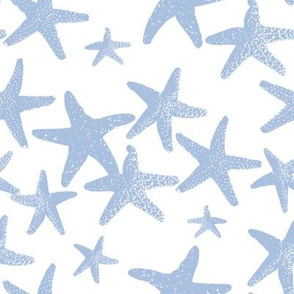 Wish Upon a Star blueberry 2