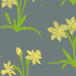 bright yellow daffodils on cool grey