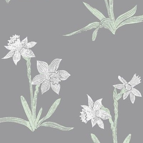 white daffodils on light grey
