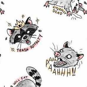 Original Trash Cat and Trash Panda