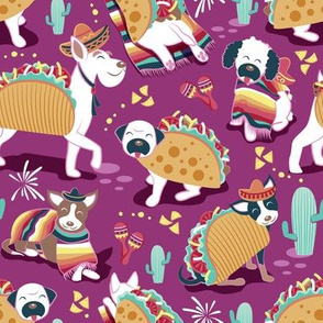 Small scale // Mexican tacos dogs team // dark pink