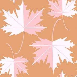 Pink Blush maple leaves
