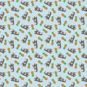Tiny black and tan Shiba Inu - pineapples