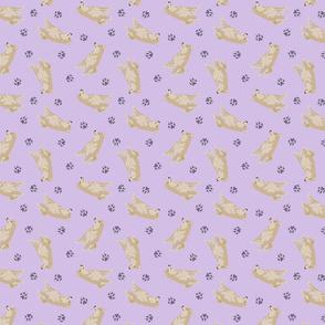 Tiny cream Shiba Inu - purple