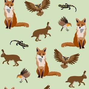forest animals - fox, owl, rabbit, bird and salamander
