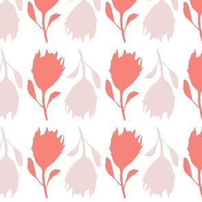 Pretty in protea