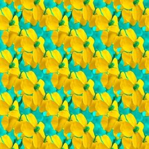 Poppies blue yellow