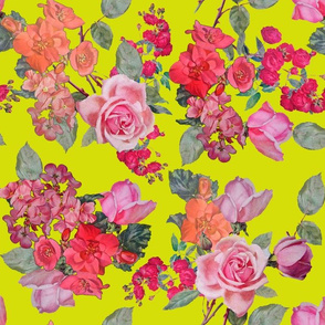 Vintage Roses // Chartreuse