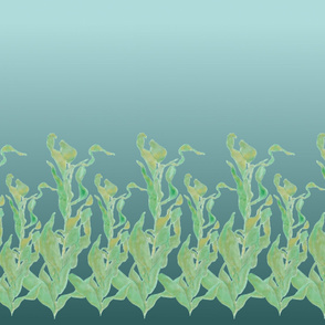 Panel / Rapport of kelp