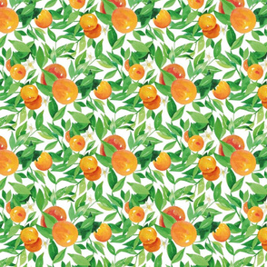 Watercolor Oranges and flowers - on white