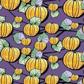 Purple and Orange Pumpkin Patch for Halloween